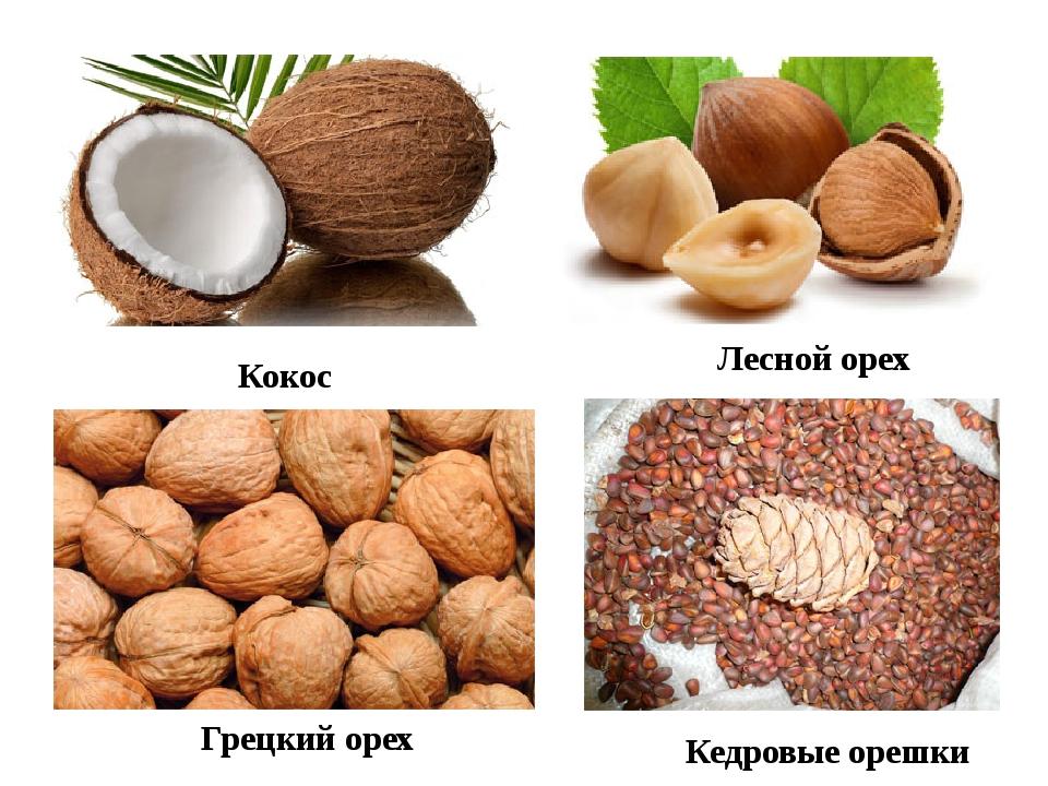 Кокос Лесной орех Грецкий орех Кедровые орешки
