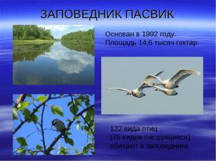 ЗАПОВЕДНИК ПАСВИК 122 вида птиц (75 видов гнездящиеся) обитают в заповеднике.