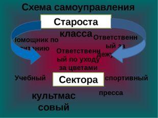Схема самоуправления культмассовый Староста класса спортивный Сектора Учебный