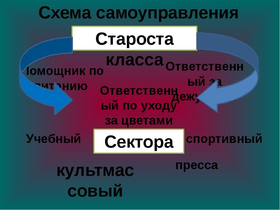 Схема самоуправления культмассовый Староста класса спортивный Сектора Учебный...