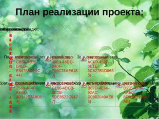 План реализации проекта: