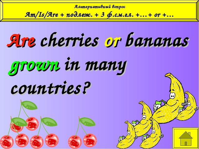 Are cherries or bananas grown in many countries? Альтернативный вопрос Am/Is...