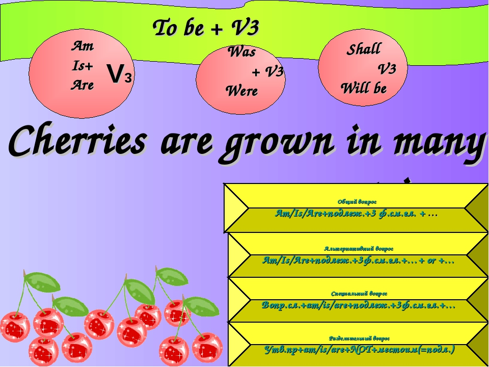 Cherries are grown in many countries. 			To be + V3 Am Is+ Are Was 	 + V3 Wer...