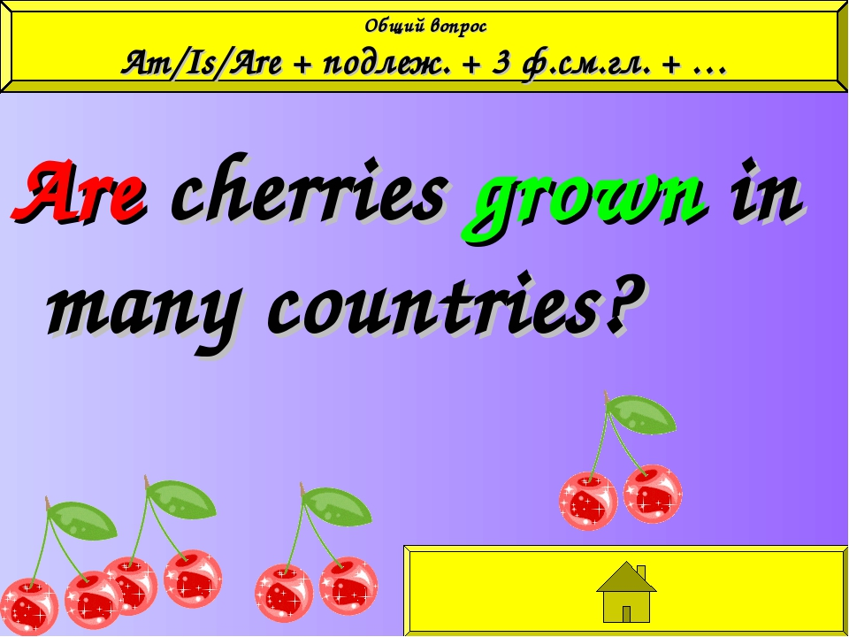 Are cherries grown in many countries? Общий вопрос Am/Is/Are + подлеж. + 3 ф....