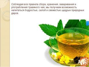 Соблюдая все правила сбора, хранения, заваривания и употребления травяного ча