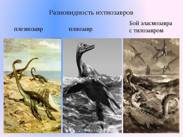 плезиозавр плиозавр Бой эласмозавра с тилозавром Разновидность ихтиозавров