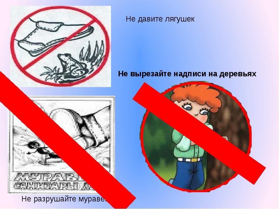 Не вырезайте надписи на деревьях Не давите лягушек Не разрушайте муравейники