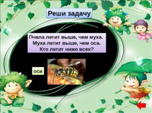 Реши задачу Пчела летит выше, чем муха. Муха летит выше, чем оса. Кто летит н