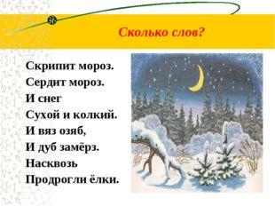 Сколько слов? Скрипит мороз. Сердит мороз. И снег Сухой и колкий. И вяз озяб,