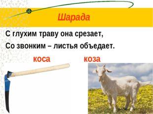 Шарада С глухим траву она срезает, Со звонким – листья объедает. коса коза