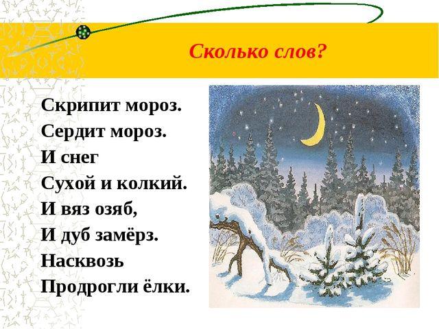 Сколько слов? Скрипит мороз. Сердит мороз. И снег Сухой и колкий. И вяз озяб,...