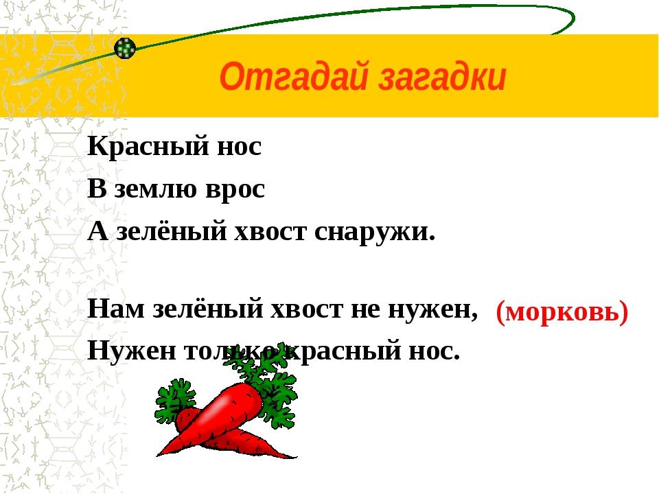 Красный нос В землю врос А зелёный хвост снаружи. Нам зелёный хвост не нужен,...