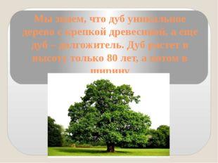 Мы знаем, что дуб уникальное дерево с крепкой древесиной, а еще дуб – долгожи
