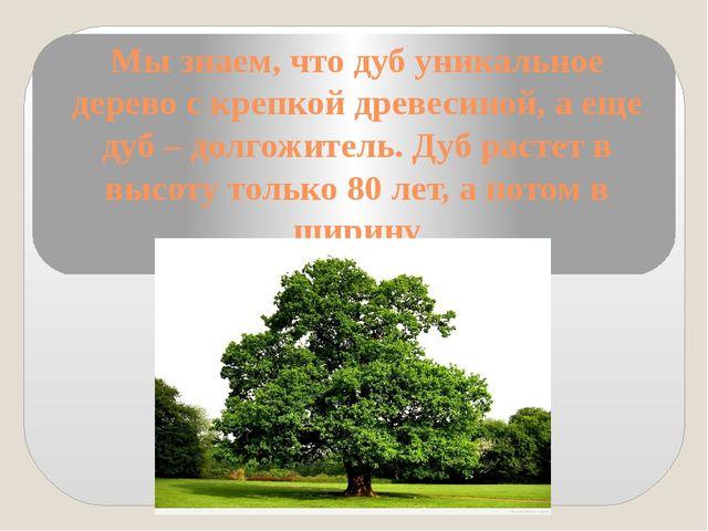 Мы знаем, что дуб уникальное дерево с крепкой древесиной, а еще дуб – долгожи...