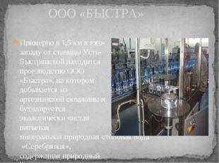 ООО «БЫСТРА» Примерно в 1,5 км к юго-западу от станицы Усть-Быстрянской нахо