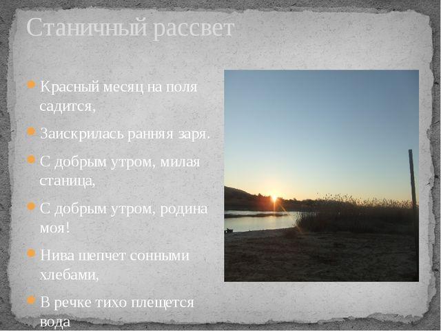 Станичный рассвет Красный месяц на поля садится, Заискрилась ранняя заря. С д...