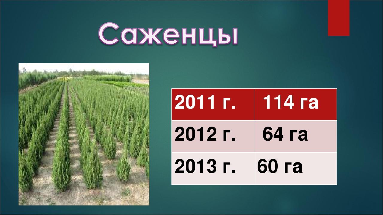 2011 г. 114 га 2012 г. 64 га 2013 г.60 га