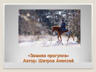 «Зимняя прогулка» Автор: Шатров Алексей