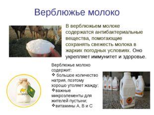 Верблюжье молоко В верблюжьем молоке содержатся антибактериальные вещества, п