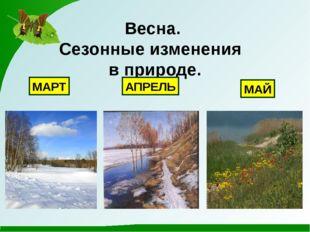 Весна. Сезонные изменения в природе. МАРТ АПРЕЛЬ МАЙ