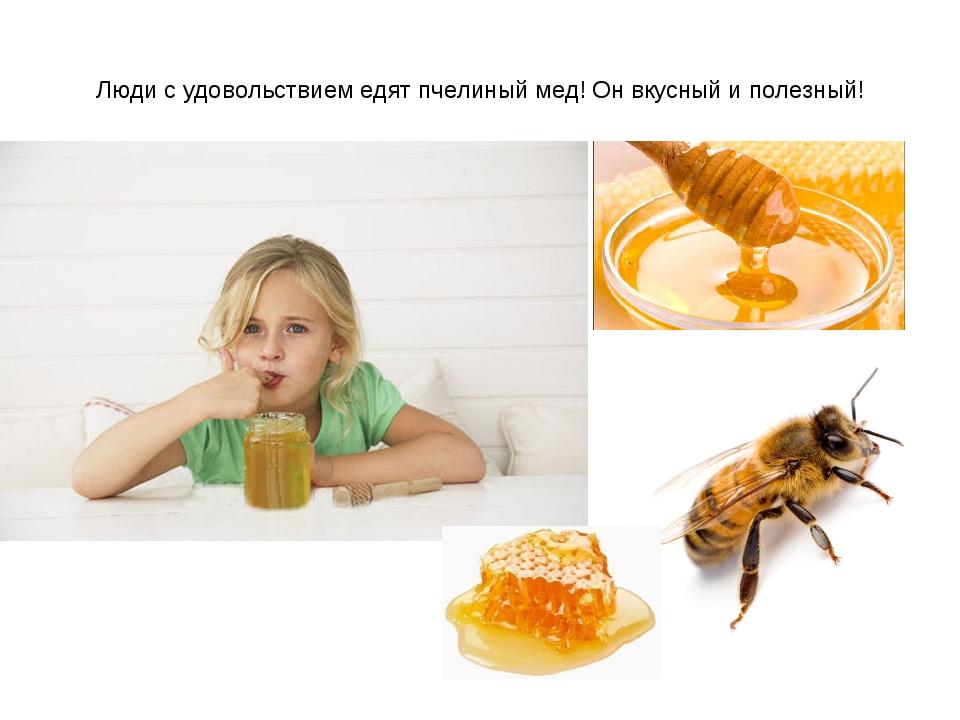 Люди с удовольствием едят пчелиный мед! Он вкусный и полезный!