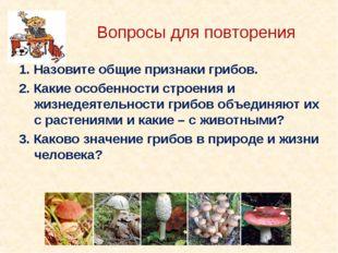 Вопросы для повторения 1. Назовите общие признаки грибов. 2. Какие особенност