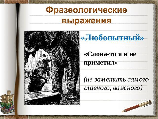 «Любопытный» «Слона-то я и не приметил» (не заметить самого главного, важного)