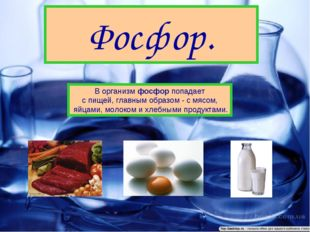 Фосфор. В организм фосфор попадает с пищей, главным образом - с мясом, яйцами
