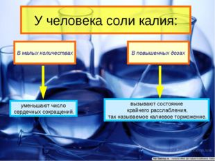 У человека соли калия: В малых количествах В повышенных дозах уменьшают число