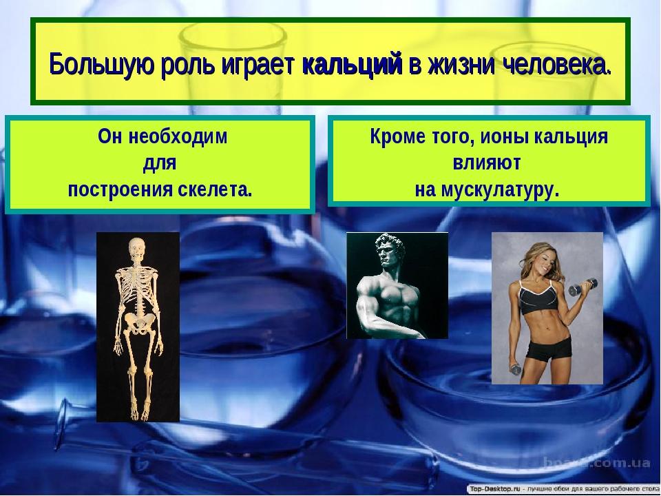 Большую роль играет кальций в жизни человека. Кроме того, ионы кальция влияют...