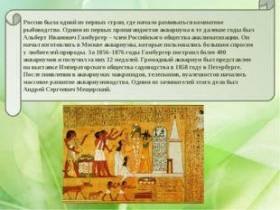 Россия была одной из первых стран, где начало развиваться комнатное рыбоводст