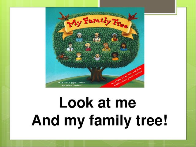 Look at me And my family tree!