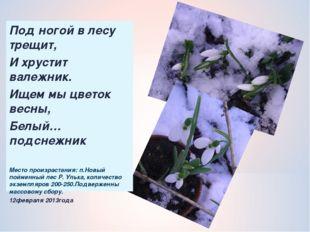 Под ногой в лесу трещит, И хрустит валежник. Ищем мы цветок весны, Белый…подс