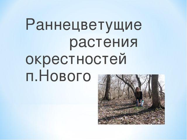 Раннецветущие растения окрестностей п.Нового