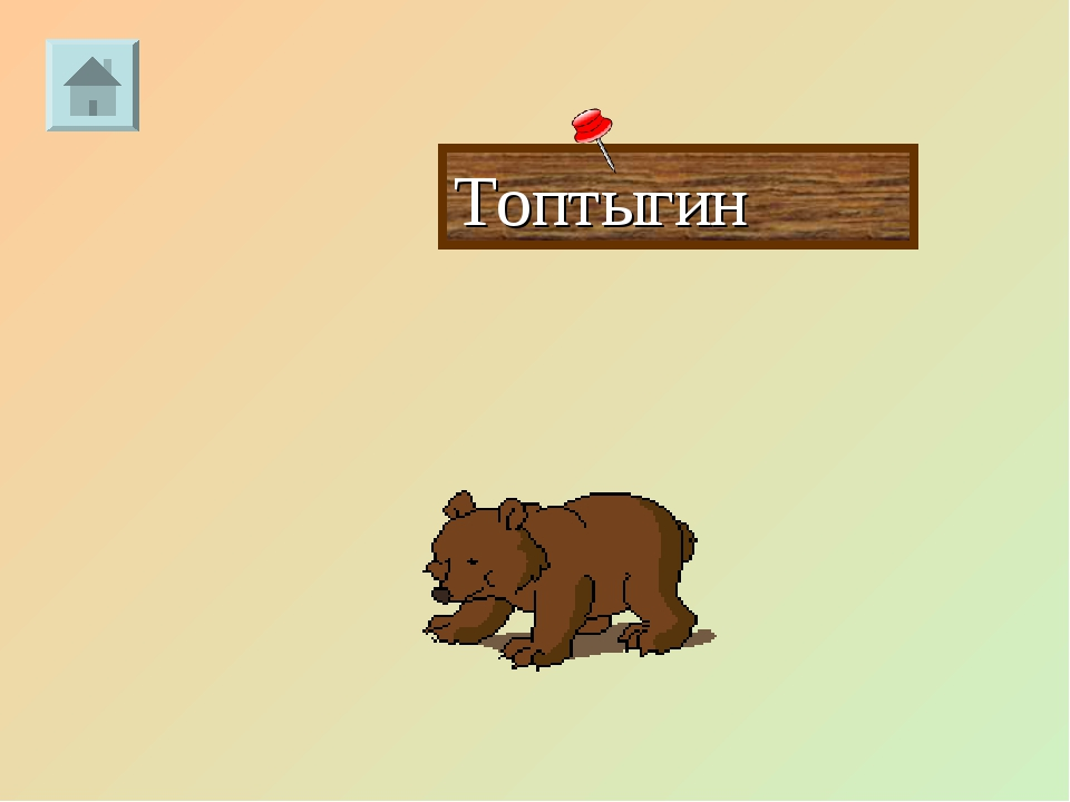 Топтыгин
