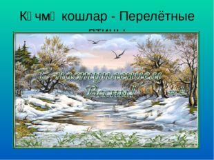 Күчмә кошлар - Перелётные птицы