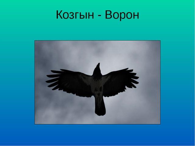 Козгын - Ворон