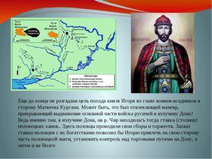 Еще до конца не разгадана цель похода князя Игоря во главе воинов-всадников в