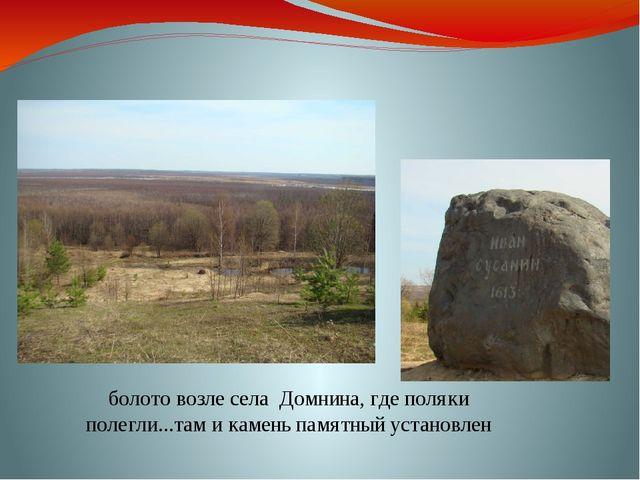 болото возле села Домнина, где поляки полегли...там и камень памятный установ...