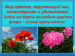 Мир цветов, окружающий нас, многообразен и удивителен! Будем же беречь волшеб