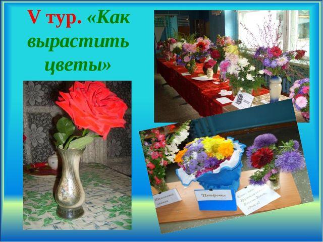 V тур. «Как вырастить цветы» .