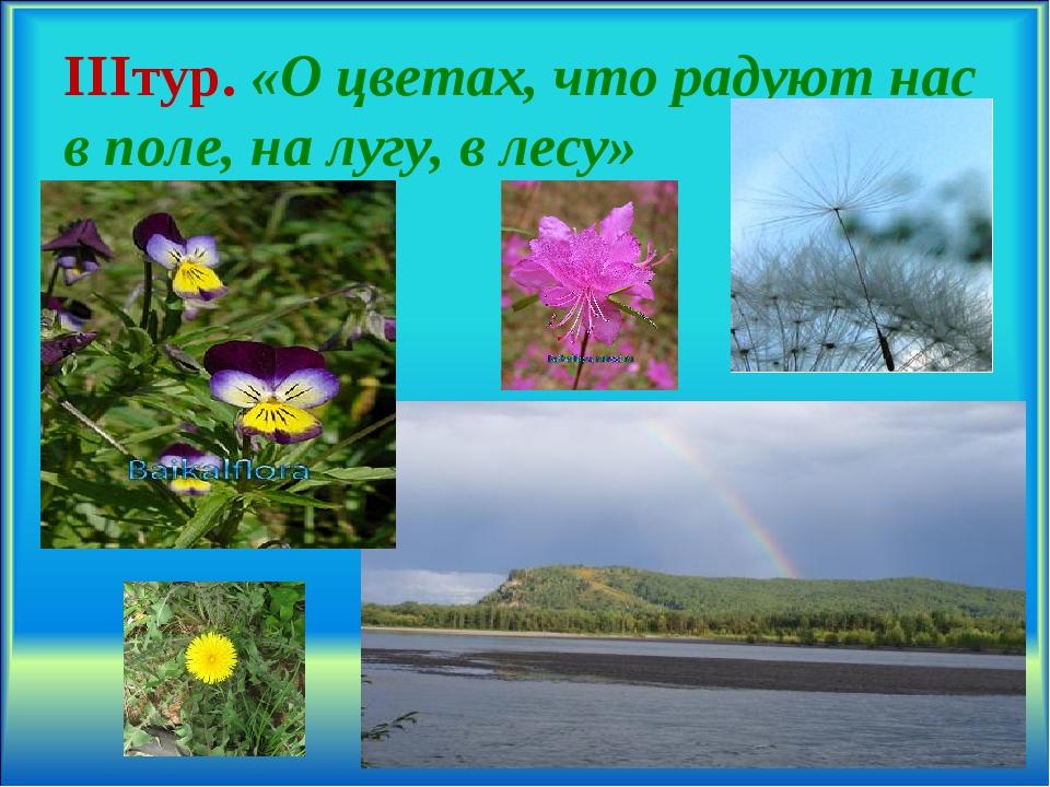 IIIтур. «О цветах, что радуют нас в поле, на лугу, в лесу» .