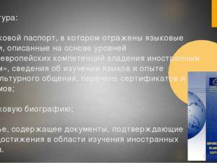 Структура: а) языковой паспорт, в котором отражены языковые навыки, описанные