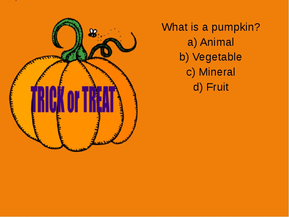 What is a pumpkin? a) Animal b) Vegetable c) Mineral d) Fruit