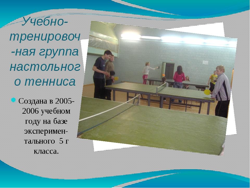Учебно-тренировоч-ная группа настольного тенниса Создана в 2005-2006 учебном...