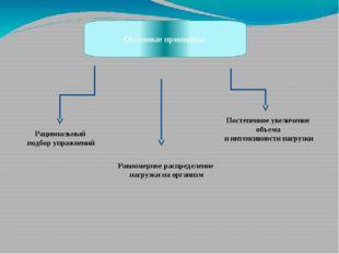 Основные принципы: Рациональный подбор упражнений Равномерное распределение