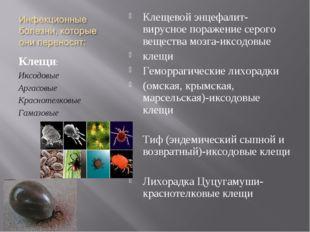Клещи: Иксодовые Аргасовые Краснотелковые Гамазовые Клещевой энцефалит-вирусн