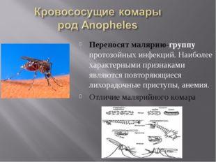 Переносят малярию-группу протозойных инфекций. Наиболее характерными признака