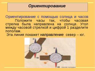 Ориентирование Ориентирование с помощью солнца и часов Положите часы так, чт