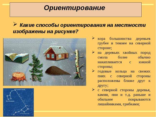 Ориентирование Какие способы ориентирования на местности изображены на рисунк...